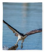 Animal - Bird - Osprey Catching A Fish Fleece Blanket