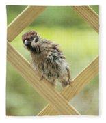 Animal Children Fleece Blanket
