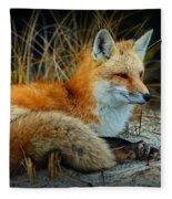 Animal - The Alert Fox  Fleece Blanket