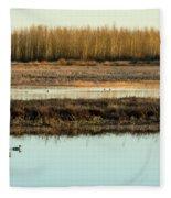 Ankeny Reflections Fleece Blanket
