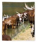Ankole-watusi Cattle Fleece Blanket