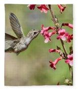 Anna's Hummingbird And The Penstemon  Fleece Blanket