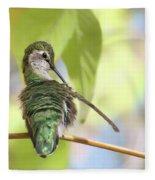 Anna's Hummingbird - Preening Fleece Blanket