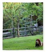 Annie In Her Yard Fleece Blanket