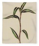 Anoectochilus Striatus Fleece Blanket