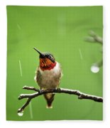 Another Rainy Day Hummingbird Fleece Blanket