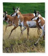 Antelope 1 Fleece Blanket