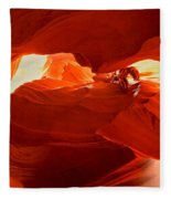 Antelope Aglow Fleece Blanket