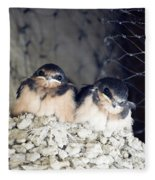 Antelope Island Birds Fleece Blanket
