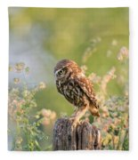Anticipation - Little Owl Staring At Its Prey Fleece Blanket