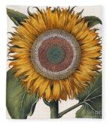 Antique Sunflower Print Fleece Blanket