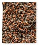 Ants Fleece Blanket
