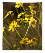 Anza Borrego Desert Sunflowers 1 Fleece Blanket