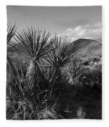 Anza-borrego Yuccas Fleece Blanket