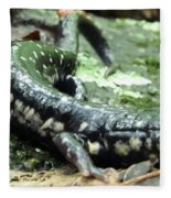 Appalachian Slimy Salamander Fleece Blanket