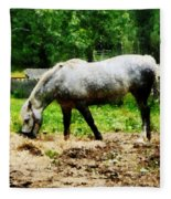 Appaloosa Eating Hay Fleece Blanket
