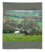 Appaloosa In May Fleece Blanket