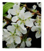 Apple Blossoms 3 Fleece Blanket