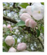 Apple Tree Blossoms Art Prints Apple Blossom Buds Baslee Troutman Fleece Blanket