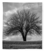 Apple Tree Bw Fleece Blanket