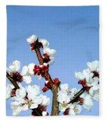 Apricot Blossoms Fleece Blanket