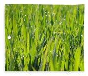 April Dewdrop Fairylights Fleece Blanket