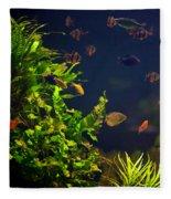 Aquarium Fish And Plants In Zoo Fleece Blanket
