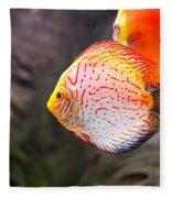Aquarium Orange Spotted Fish Fleece Blanket