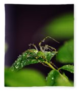 Arachnishower Fleece Blanket