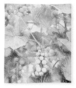 Arbor Grapes Sketch Fleece Blanket