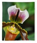 Arboretum Tropical House Orchid II Fleece Blanket