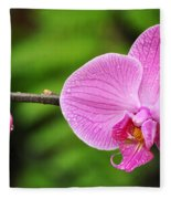 Arboretum Tropical House Orchid Fleece Blanket