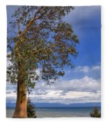 Arbutus Tree At Rathtrevor Beach British Columbia Fleece Blanket