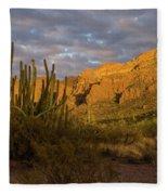 Arch Canyon 3 Fleece Blanket
