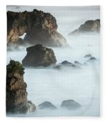 Arched Rock Sea Bird Fleece Blanket