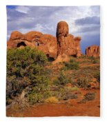 Arches 14 Fleece Blanket