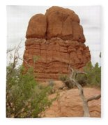 Arches Formation 24 Fleece Blanket