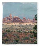Arches National Park 20 Fleece Blanket