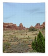 Arches National Park 21 Fleece Blanket