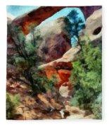 Arches National Park Trail Fleece Blanket