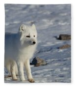 Arctic Fox Fleece Blanket