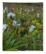 Arctic Gentian Blooming In The Alpine Fleece Blanket
