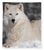 Arctic Wolf... Fleece Blanket