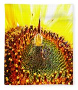 Are You Looking At Me - Butterfly Fleece Blanket
