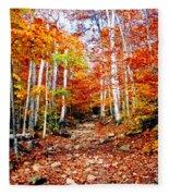 Arethusa Falls Trail Fleece Blanket