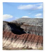 Arizona 16 Fleece Blanket