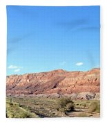 Arizona 17 Fleece Blanket