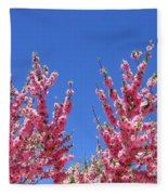 Arizona 3 Fleece Blanket