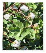 Arizona Cotton Fleece Blanket