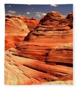 Arizona Desert Landscape Fleece Blanket